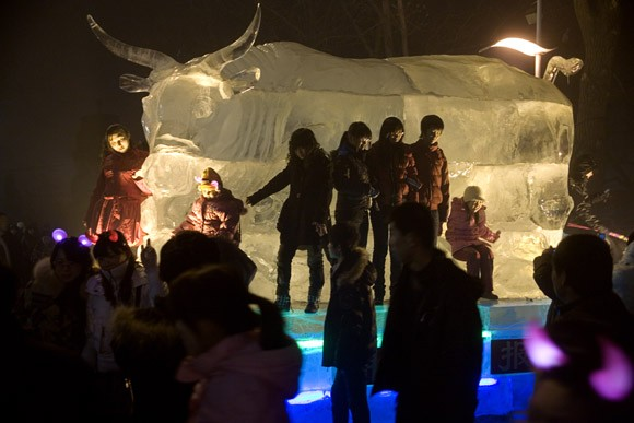 People congregate around a bull-shaped ice sculpture in Stalin Park in Harbin, Heilongjiang Province, China.  2009 is the year of the ox according to the Chinese zodiac.