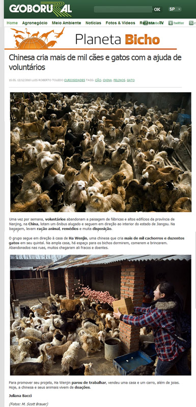 Saving Nanjing's Cats and Dogs on Editora Globo - Planeta Bicho